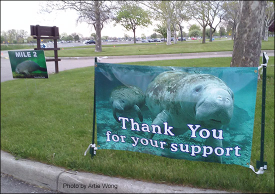 Thank you for your support manatee banner.