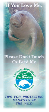 If You Love Me, Please Don't Touch or Feed Me brochure
