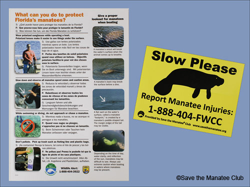 Waterproof waterway card with manatee protection tips and the boat decal with a number for reporting injured manatees.
