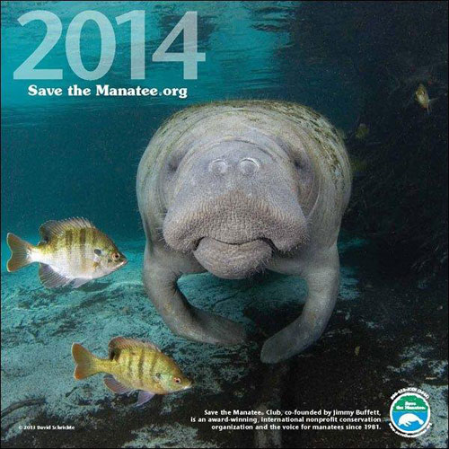 2014 Manatee Wall Calendar