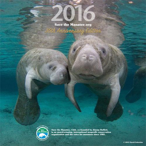 2016 Manatee Wall Calendar