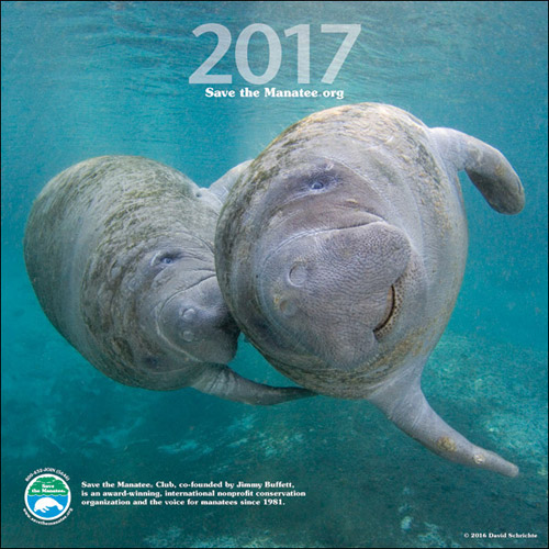 2017 Manatee Wall Calendar