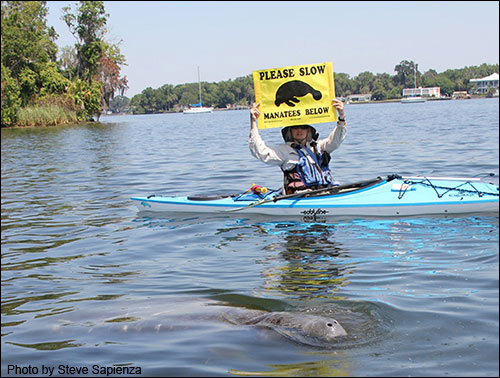 The boating banner is used to alert boaters that a manatee is close by.