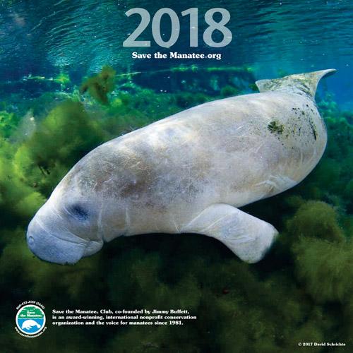 2018 Manatee Wall Calendar Front