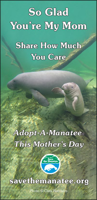 Mother's Day PSA Ad 2018, Quarter Page