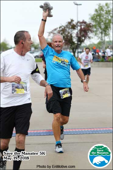 "Richard Odenthal crosses the finishing line of the Save the Manatee 5K holding up ""Manny,"" his little stuffed manatee."