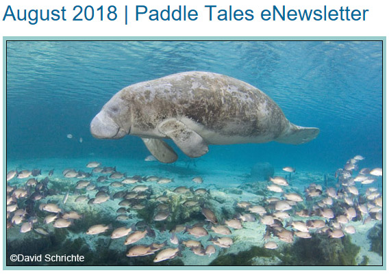 August 2018 Paddle Tales eNewsletter