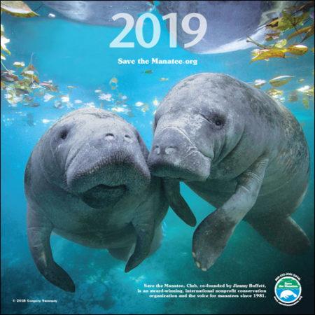 2019 Manatee Wall Calendar
