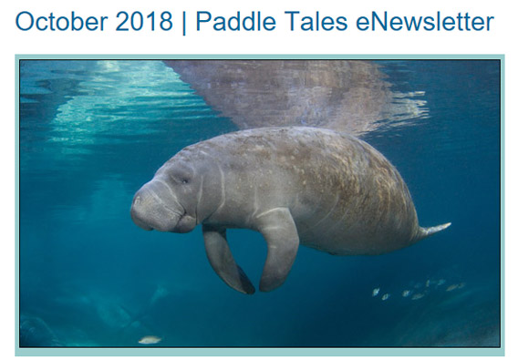 October 2018 Paddle Tales eNewsletter