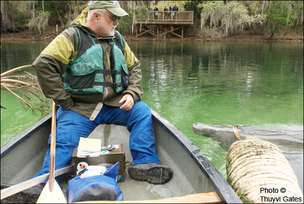 Manatee Specialist Wayne Hartley and manatee at Blue Spring State Park.