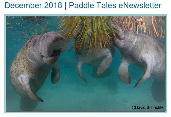 December 2018 Paddle Tales eNewsletter