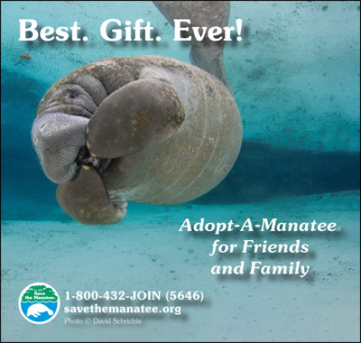 Best. Gift. Ever! manatee public service ad.