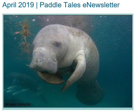April 2019 Paddle Tales eNewsletter