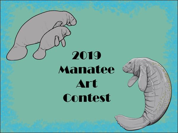 2019 Manatee Art Contest