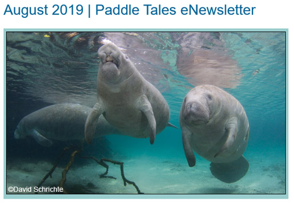 August 2019 Paddle Tales eNewsletter