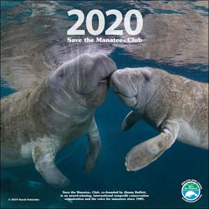 2020 manatee wall calendar
