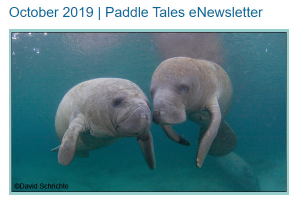October 2019 Paddle Tales eNewsletter