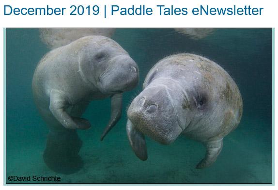 December 2019 Paddle Tales eNewsletter
