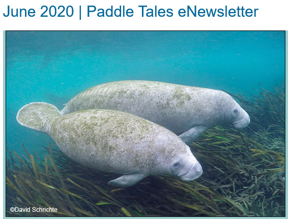 June 2020 Paddle Tales eNewsletter
