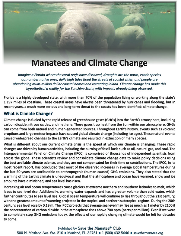 Manatees and Climate Change Flyer