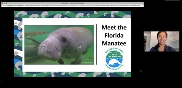 Screen shot of the Virtual Manatee Presentation