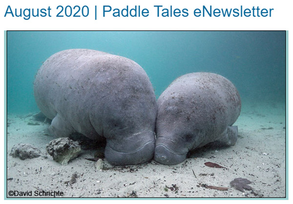 August 2020 Paddle Tales Newsletter