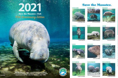 2021 Manatee Calendar