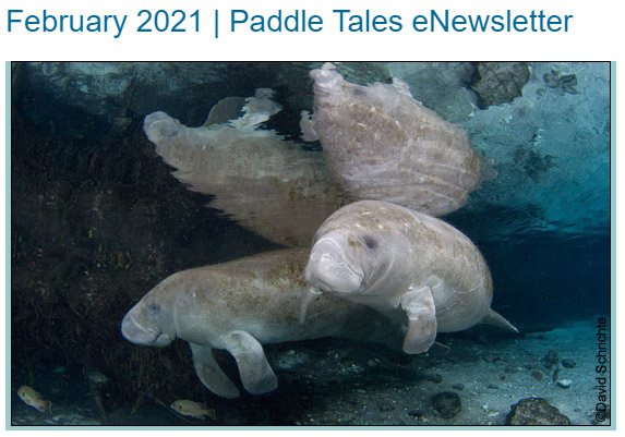 February 2021 Paddle Tales eNewsletter