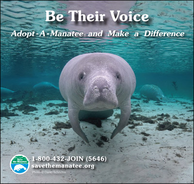 Be Their Voice Manatee PSA Ad