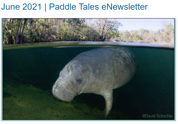 June 2021 Paddle Tales