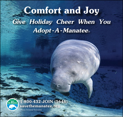 Comfort and Joy. Give Holiday Cheer When You Adopt-A-Manatee